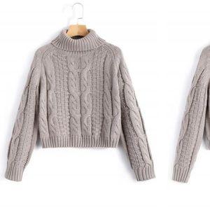 Zaful Turtleneck Cropped Knit Sweater